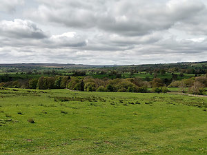 Photo Gallery. Teesdale countryside